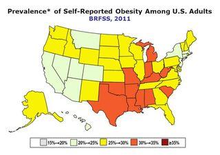 America-highest-obesity-rates